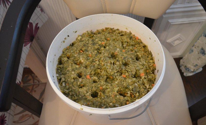 Крошево из зеленых листьев капусты на зиму: рецепты и фото