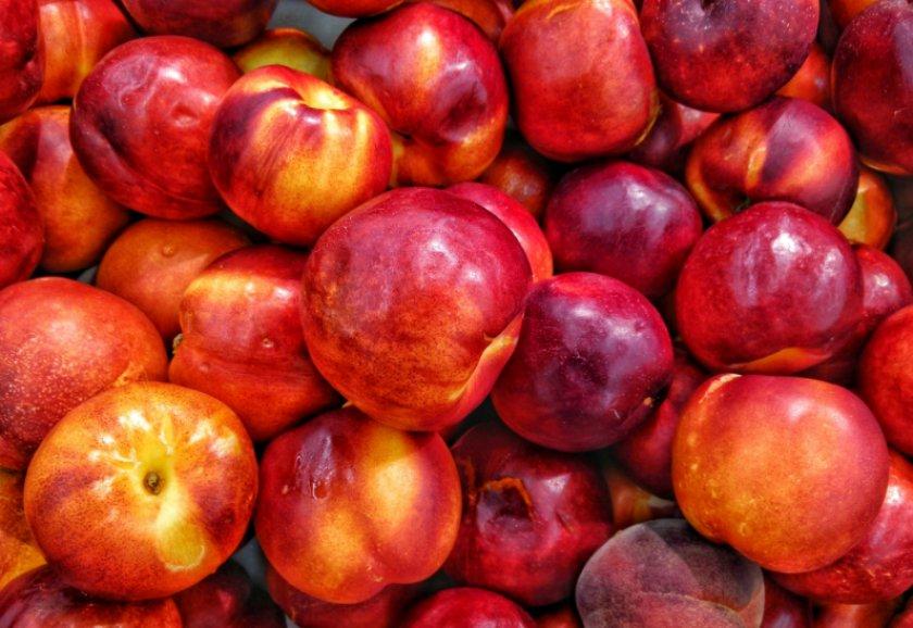 Яблочный нектарин
