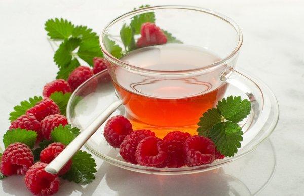 Чай из веток – как заварить, польза, из каких деревьев и кустов заваривать