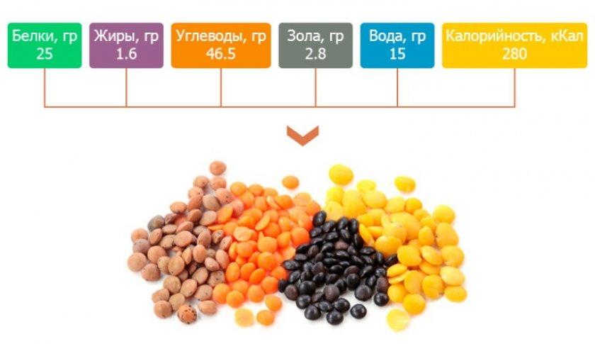 Пищевая ценность чечевицы на 100 г