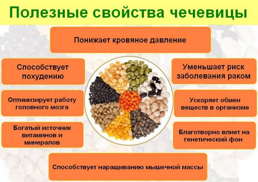 Полезные свойства чечевицы