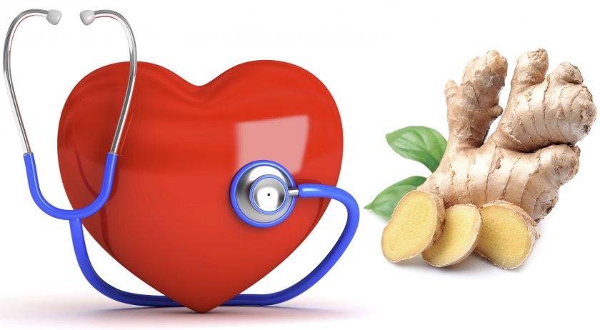 Имбирь при сердечно-сосудистых заболеваниях