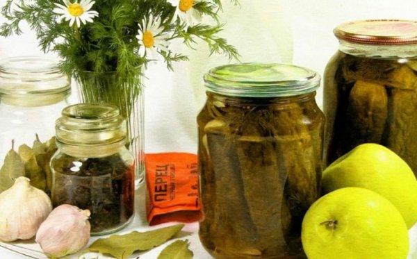 Засолка огурцов с яблочным уксусом на зиму: рецепты, способы