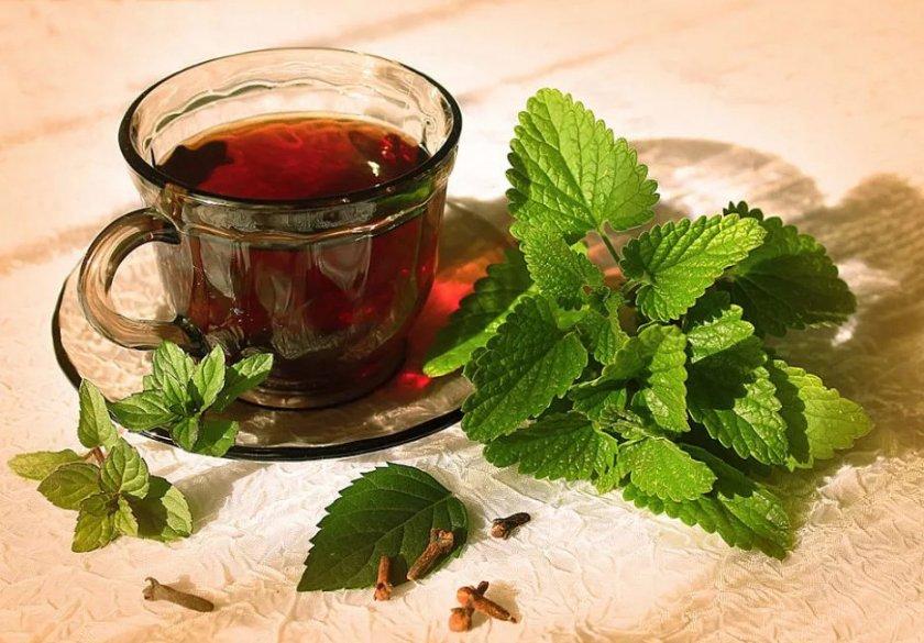 Чай с листьев малины