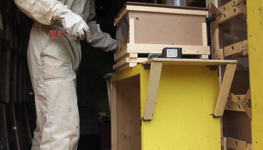 Раскладной стол для пчеловода
