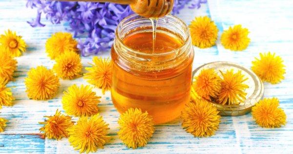 Мед из одуванчиков рецепт с фото пошагово