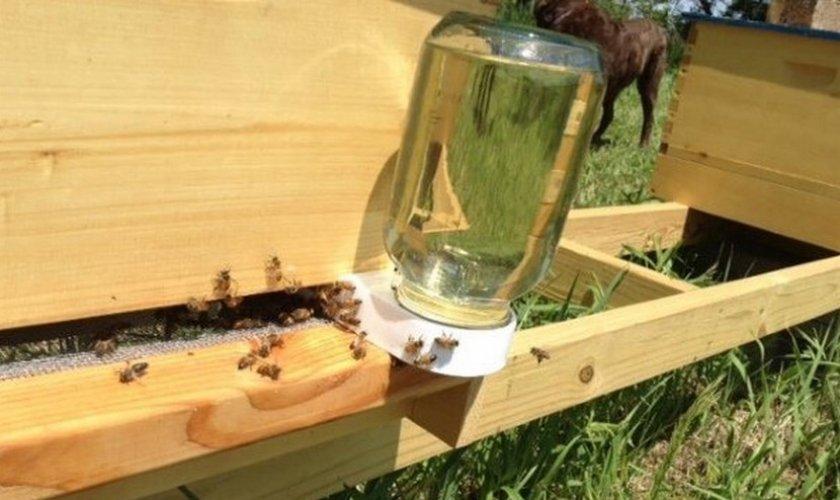 Подкормка пчёл сиропом