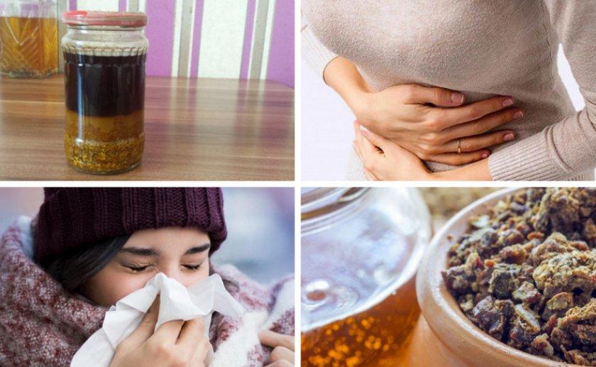 Раствор прополиса при болезнях
