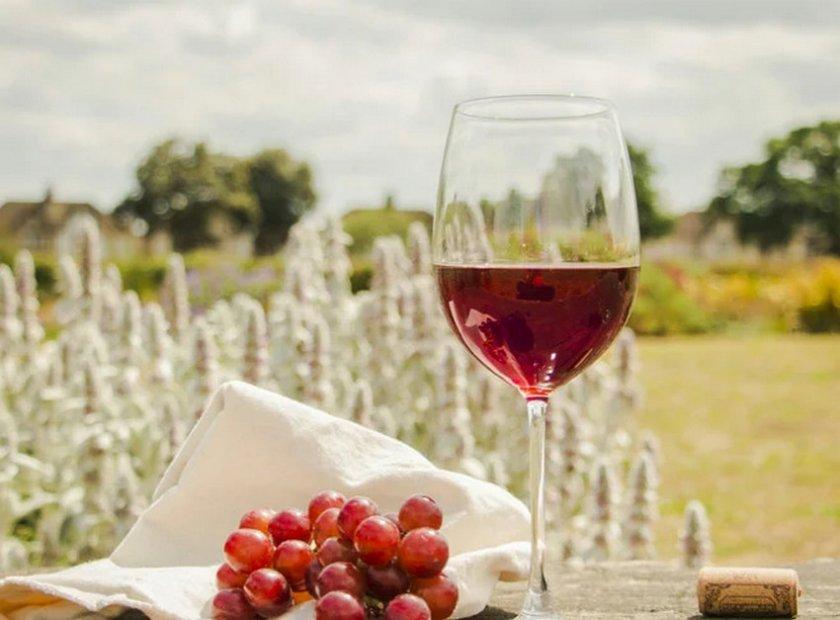 Как сделать вино из винограда Лидия в домашних условиях: пошаговые рецепты, фото