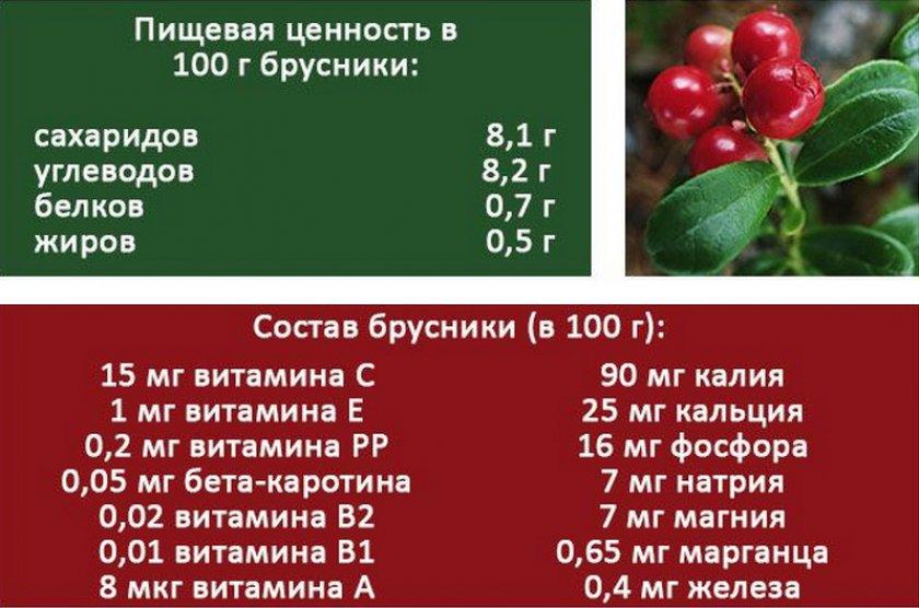 Состав и пищевая ценность брусники