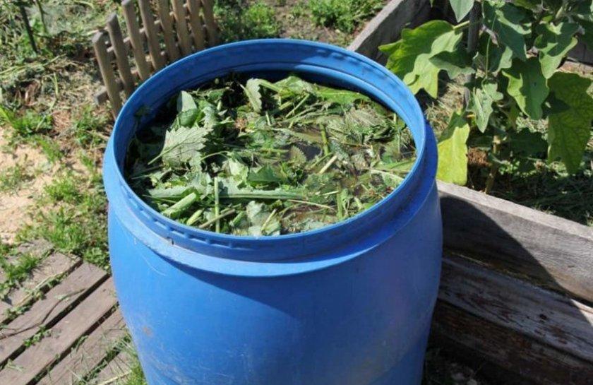 Зелёная жижа для удобрения