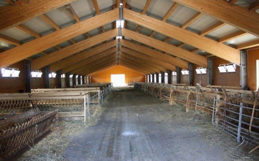 Типовой проект овчарни на 200 голов