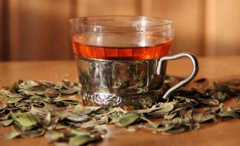 Чая из листьев брусники