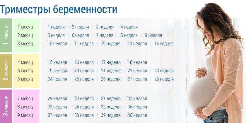 Таблица триместров беременности