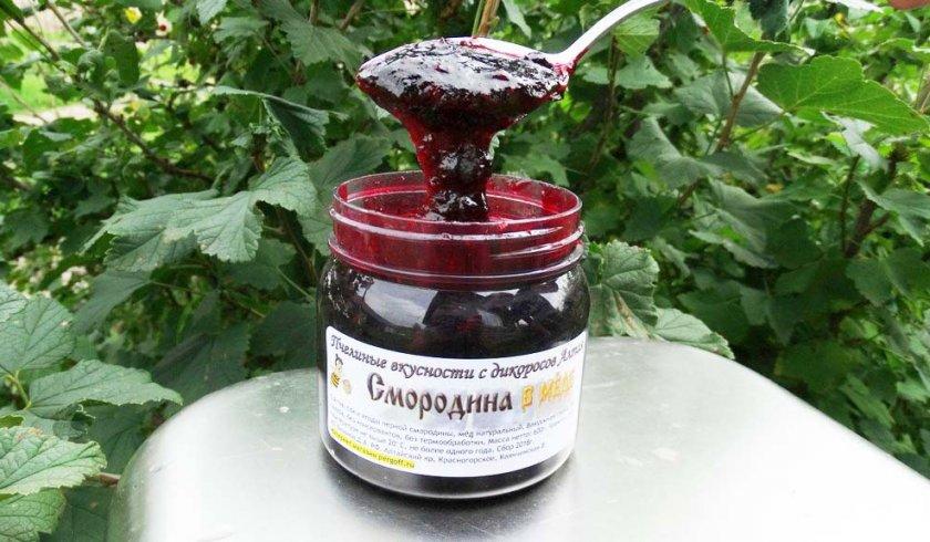 Чёрная смородина с мёдом