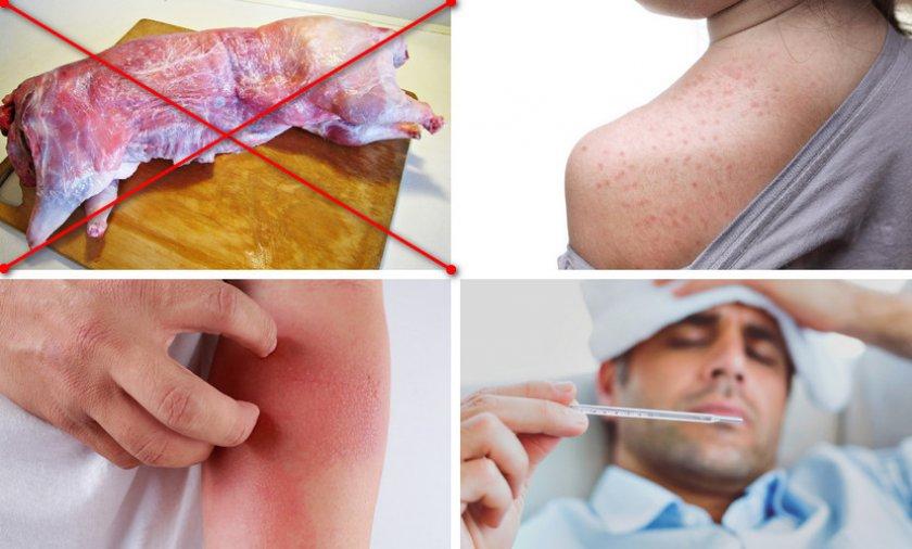 Аллергическая реакция на мясо нутрии