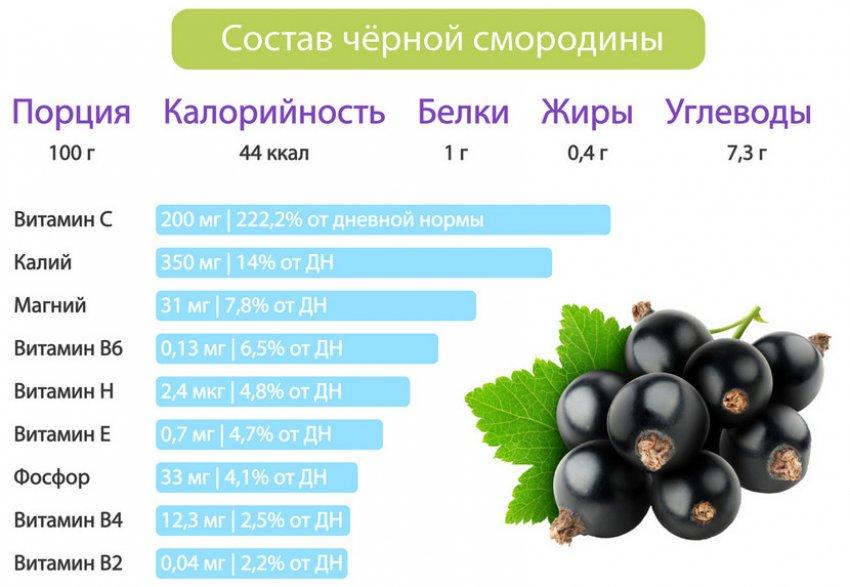 Состав чёрной смородины