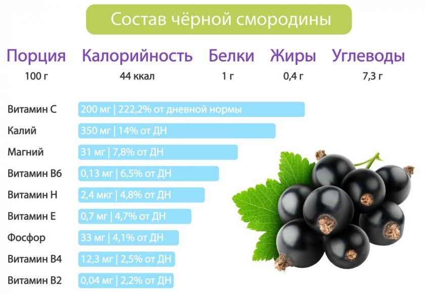 Состав черной смородины