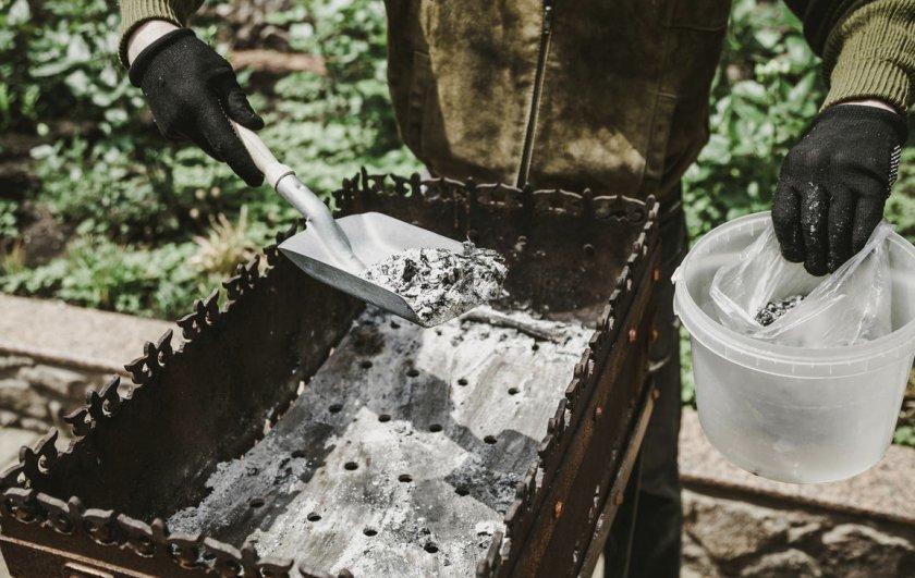 Древесная зола для подкормки смородины