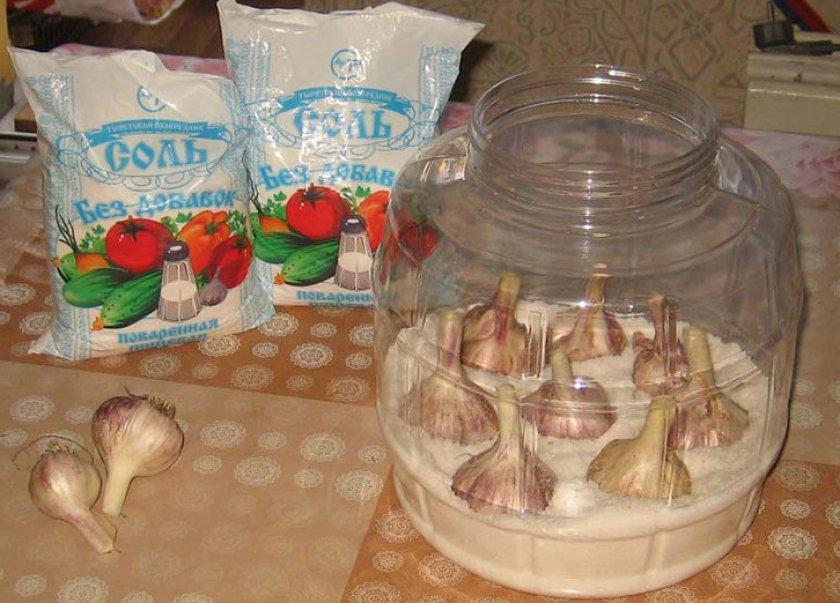 Хранение чеснока в соли